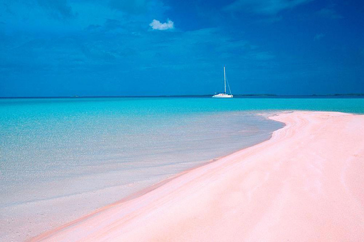 Harbour Island Pink Sand beach